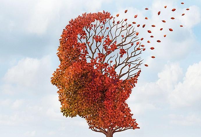 L' Agopuntura per la Demenza – E' una Terapia Efficace?