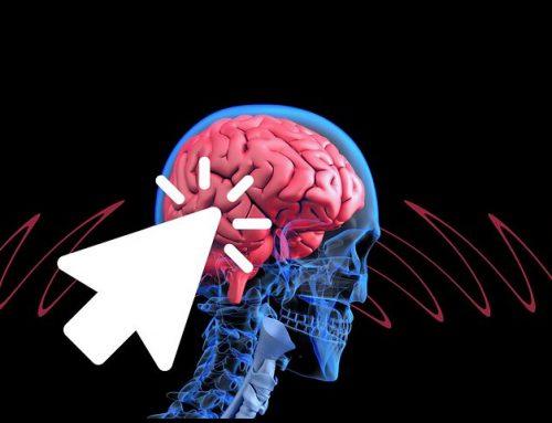Paraplegia – Topo torna a Camminare con La Stimolazone Cerebrale