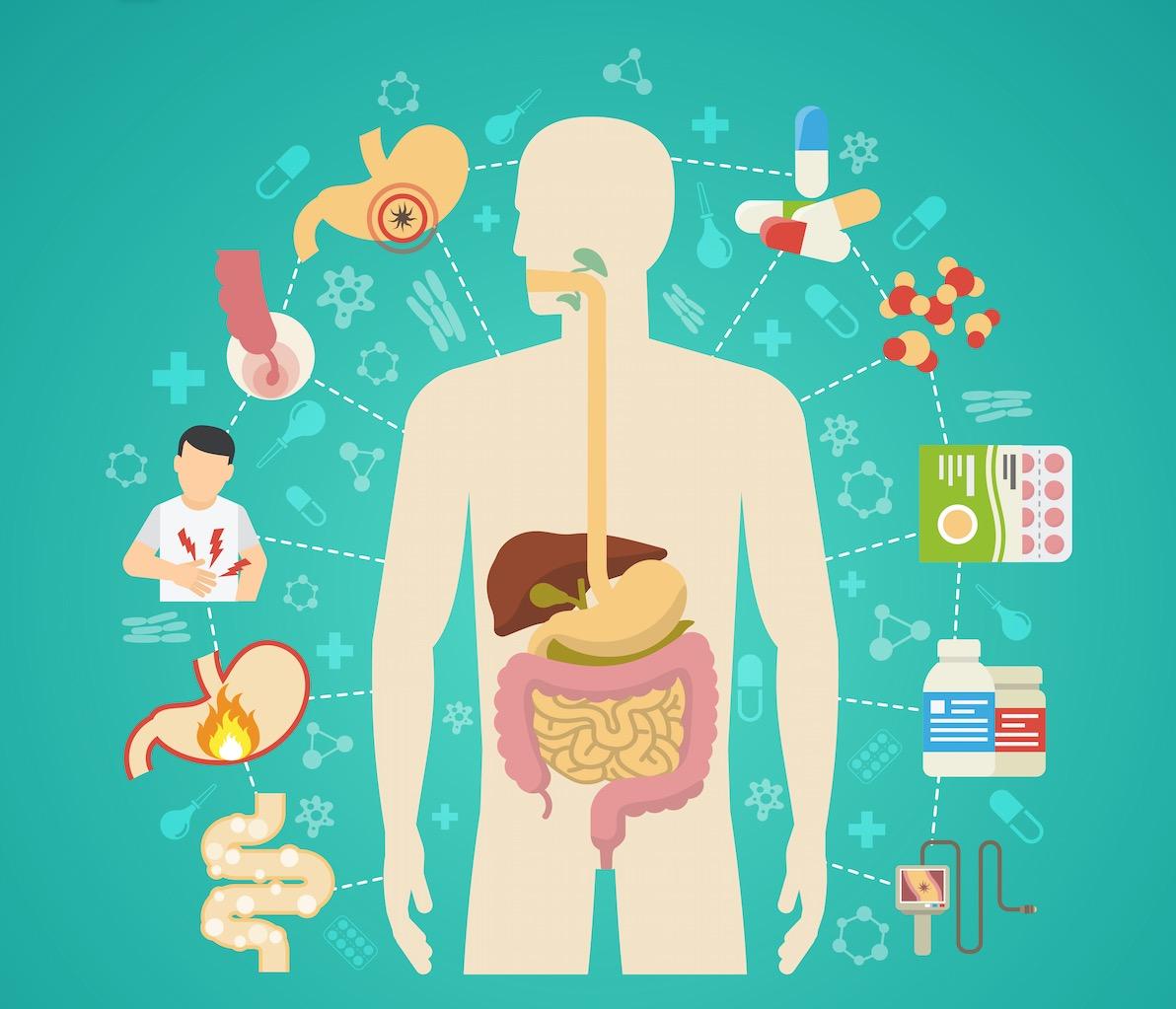 gastroenterologo online