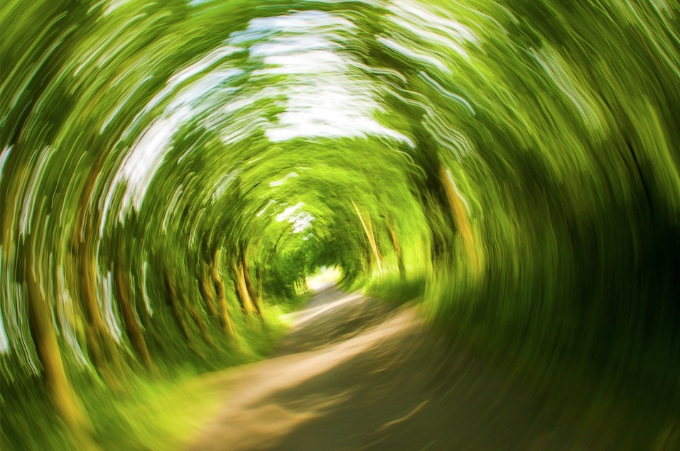 dizziness vertigo physiotherapist